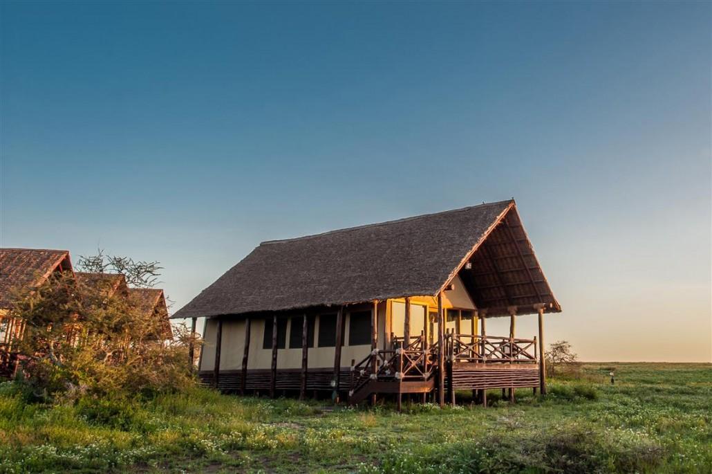 Accommodation Lake Ndutu Luxury Tented Lodge