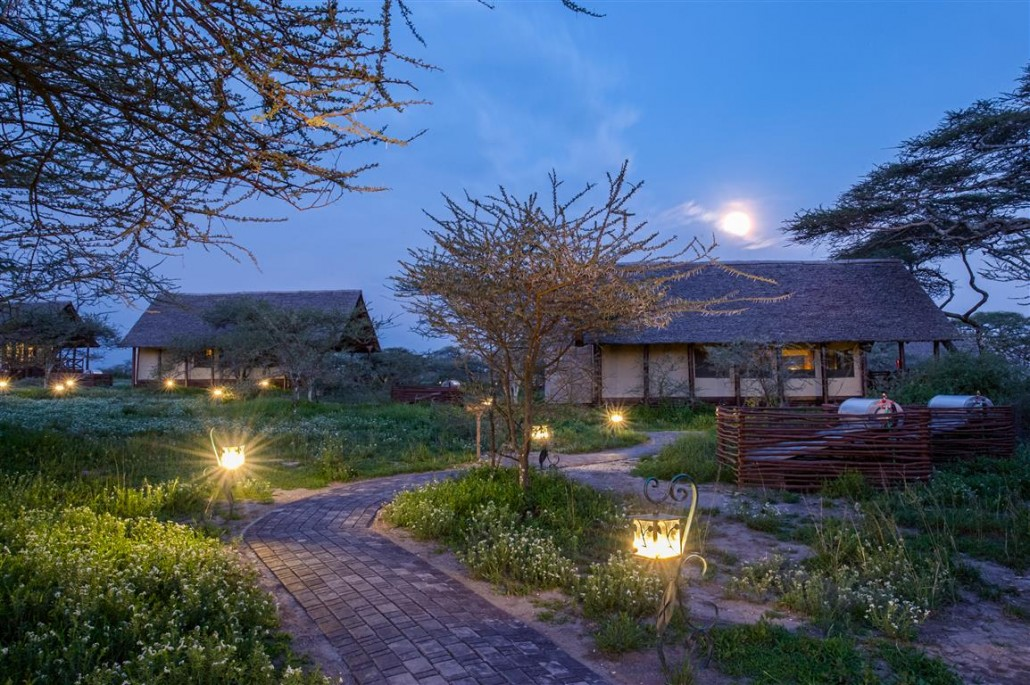 Accommodation Lake Ndutu Luxury Tented Lodge